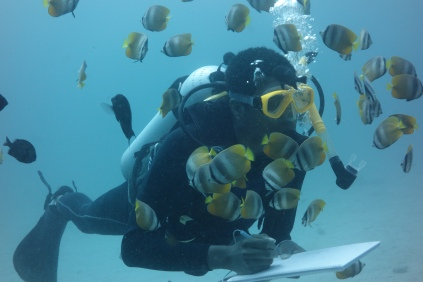 Surrounded by Butterflyfish